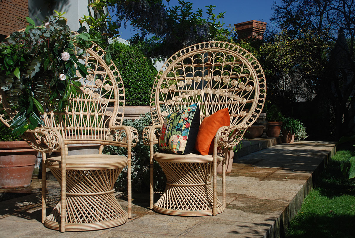 The Comeback Kid: Peacock Chairs